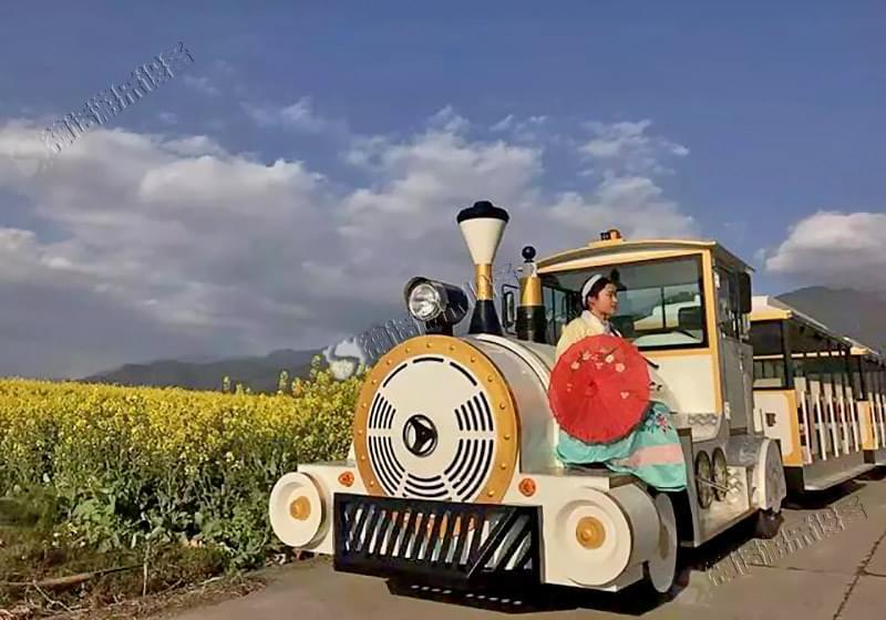 金辉游乐设备无轨观光小火车穿越万亩花田 要多浪漫有多浪漫